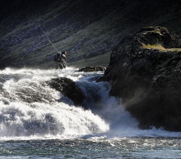 Norðurá, Borgarfjörður