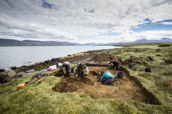 Dysnes, Dysnes archaeological dig