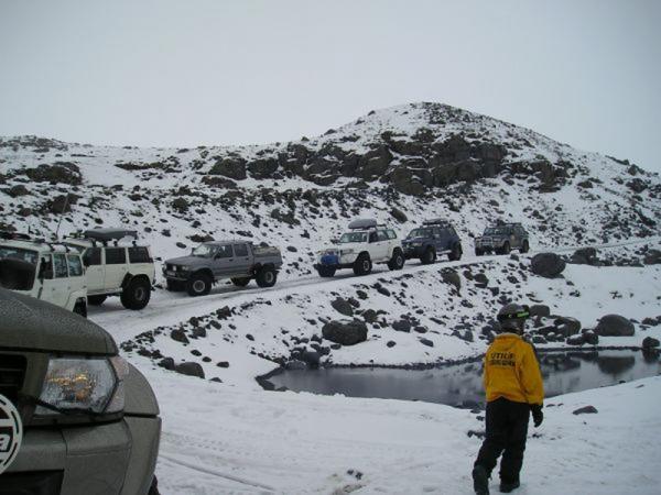 Jöklasel, Vatnajökull
