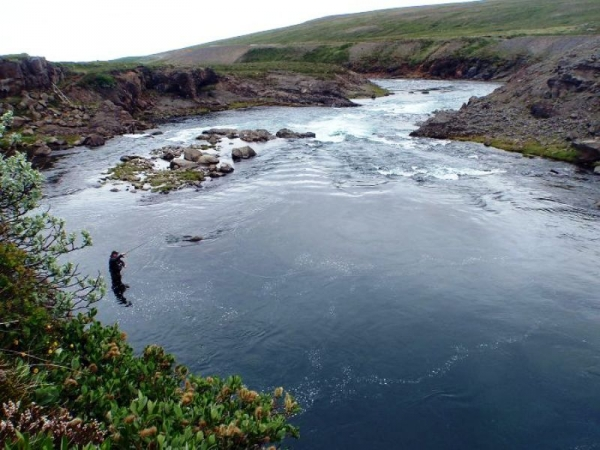Selá, Vopnafjörður