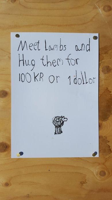 Lamb hugs for a dollar