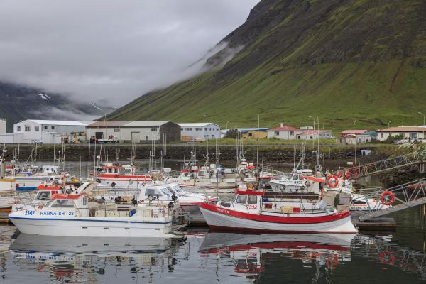 Vestfirðir, Westfjords
