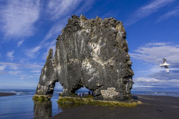 Hvítserkur, norðurland