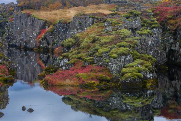 Þingvellir.jpg