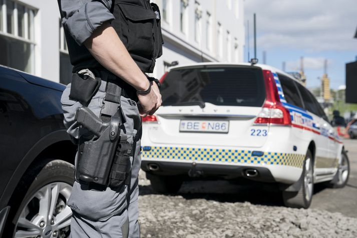 Image result for reykjavík police