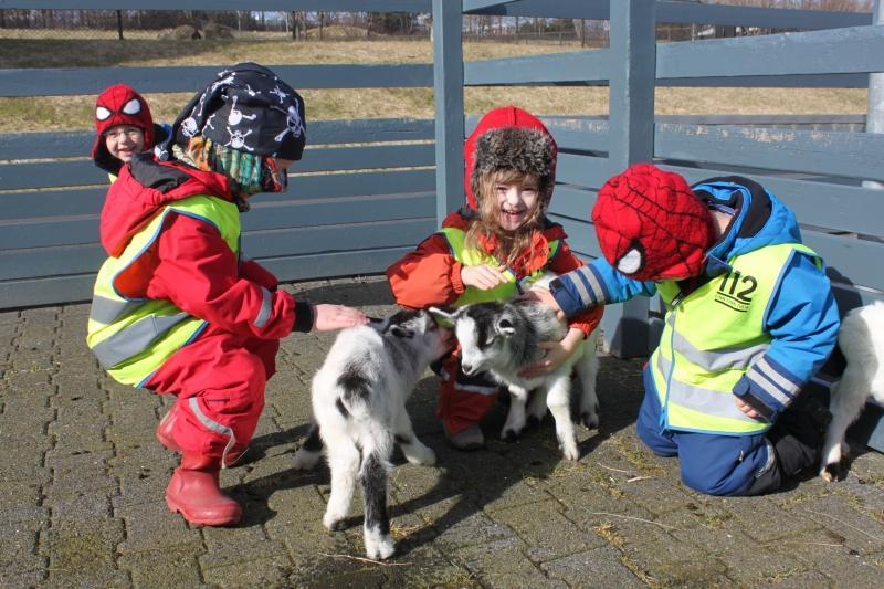 روانشناسی کودک و حیوانات