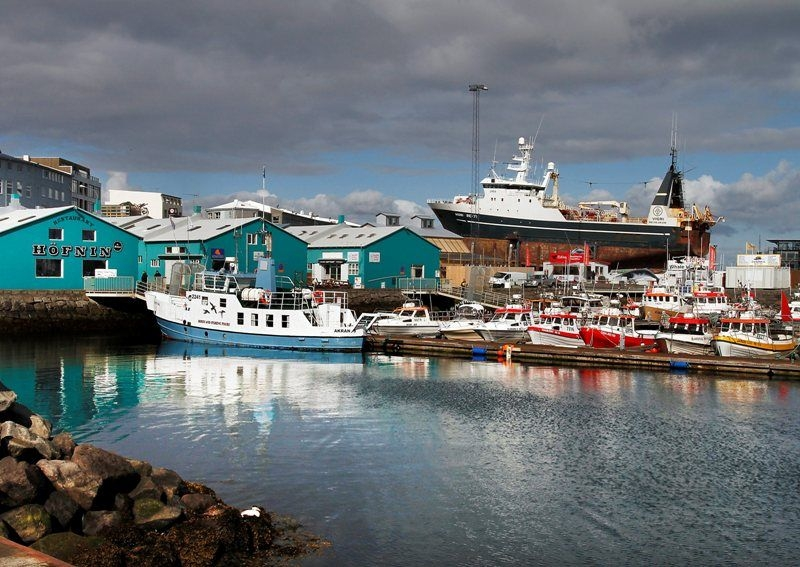 All Passengers On Whale Watching Boats In Reykjav 237 K